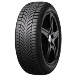 Nexen Winguard Snow G WH2 205/55-16 (H/91) Kitkarengas